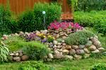 Аквариумные сомики (55 фото): названия сомов с описаниями, особенности ухода за большими и маленькими рыбками в аквариуме