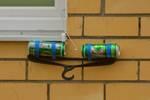 Где обитает красная рыба